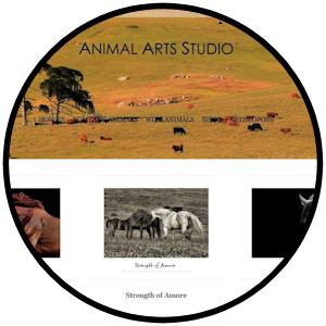 circle animalartsstudio.com